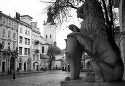 Лев біля входу в Ратушу